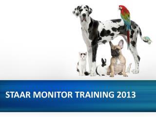 STAAR MONITOR TRAINING 2013