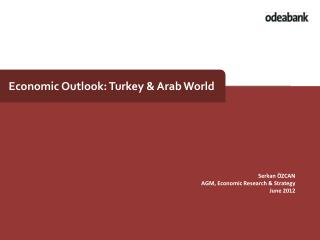 Economic Outlook: Turkey & Arab World