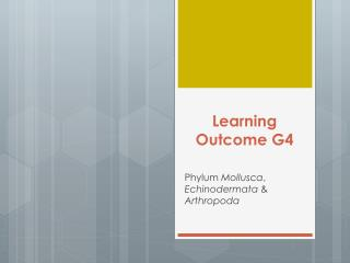 Learning Outcome G4