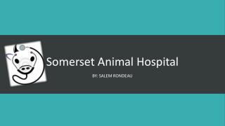 Somerset Animal Hospital