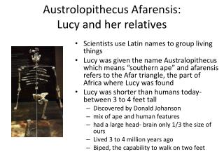 Austrolopithecus Afarensis :  Lucy and her relatives