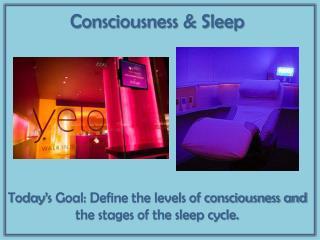 Consciousness & Sleep