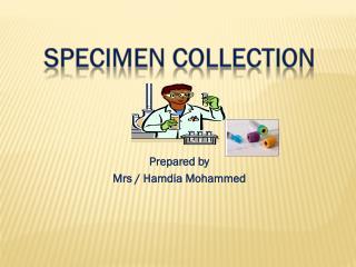 Prepared by  Mrs  /  Hamdia  Mohammed