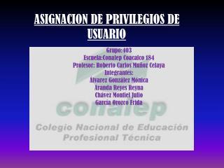 ASIGNACION DE PRIVILEGIOS DE USUARIO