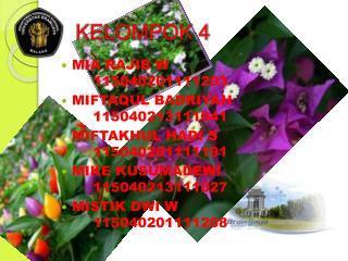 KELOMPOK 4