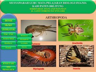 MUSYAWARAH GURU MATA PELAJARAN BIOLOGI SMA/MA KABUPATEN BRLITUNG SEKRETARIAT: SMAN1 ANJUNGPANDAN
