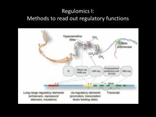 Regulomics  I: Methods to read out regulatory functions