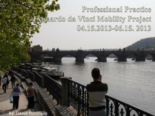 Professional Practice  Leonardo da Vinci Mobility Project 04.15.2013-06.15. 2013