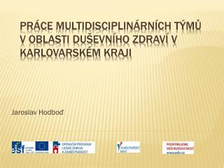 Práce  multidisciplinárních  týmů v oblasti duševního zdraví v Karlovarském kraji