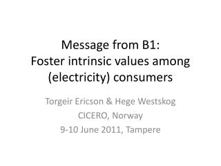 Message from B1:  Foster intrinsic values among (electricity) consumers