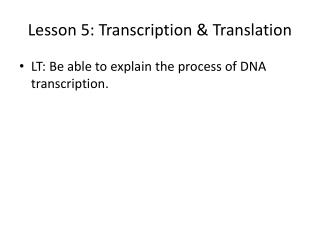 Lesson 5: Transcription & Translation