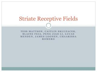 Striate Receptive Fields