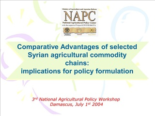 3rd National Agricultural Policy Workshop   Damascus, July 1st 2004