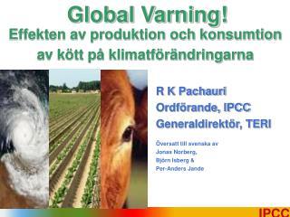 R K Pachauri Ordförande, IPCC Generaldirektör, TERI Översatt till svenska av Jonas Norberg,