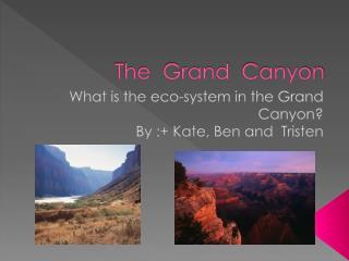 The  Grand   C anyon