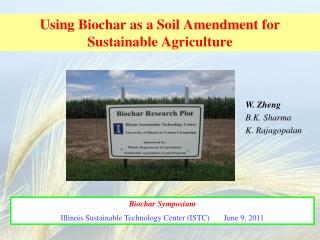 Using Biochar as a Soil Amendment for Sustainable Agriculture