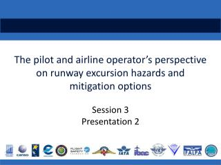 The pilot and airline operator's perspective on  runway  excursion hazards  and mitigation options