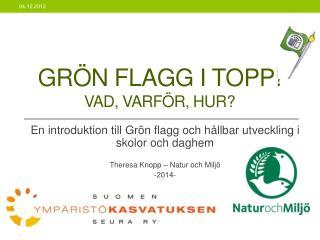 Grön  flagg  i  topp ! VAD, VARFÖR, HUR?
