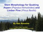 Stem Morphology for Quaking Aspen Populus tremuloides and Limber Pine Pinus flexilis