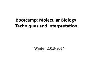 Bootcamp: Molecular Biology  T echniques and  I nterpretation