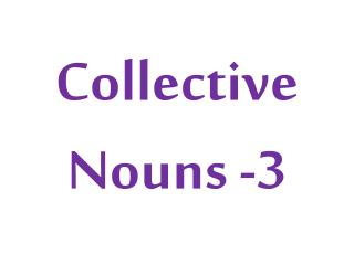 Collective  Nouns -3