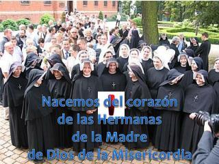 Nacemos del corazón de las Hermanas  de la Madre de Dios de la Misericordia