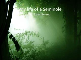 My life of a Seminole