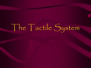 The Tactile System