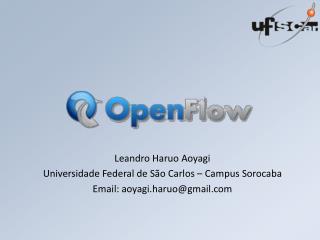 Leandro  Haruo Aoyagi Universidade Federal de São Carlos – Campus Sorocaba