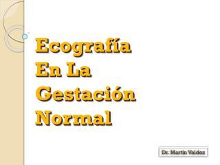 Ecografía  En La  Gestación  Normal