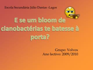 Grupo:  Volvox Ano lectivo: 2009/2010