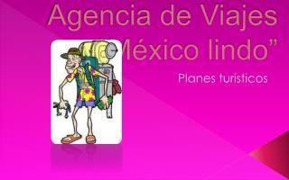 """Agencia de Viajes  """"México lindo"""""""