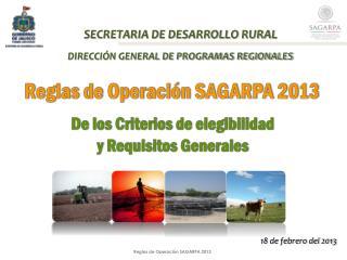 SECRETARIA DE DESARROLLO RURAL DIRECCI�N GENERAL DE PROGRAMAS REGIONALES