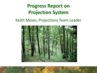 Progress Report on  Projection System