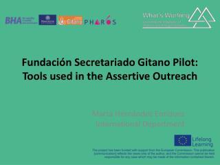 Fundaci�n Secretariado Gitano Pilot:  Tools used in the Assertive Outreach