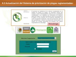 6.2 Actualizaci ó n del Sistema de priorizaci ó n de plagas reglamentadas: