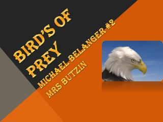 Bird�s of prey