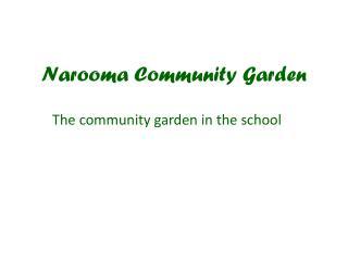 Narooma Community Garden