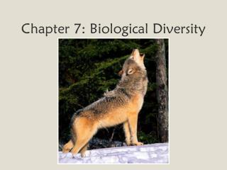 Chapter 7: Biological Diversity