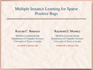 Multiple Instance Learning for Sparse Positive Bags