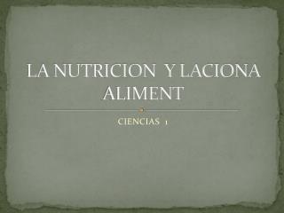 LA NUTRICION  Y LACIONA ALIMENT