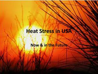Heat Stress in USA