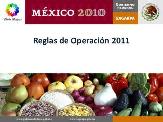 Reglas  de Operación 2011