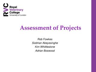 Assessment of Projects