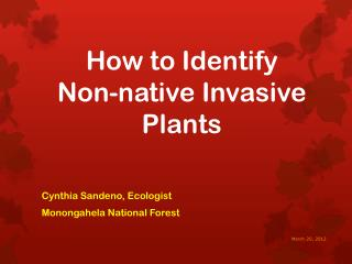 How to Identify Non-native Invasive Plants