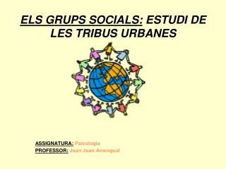 ELS GRUPS SOCIALS: ESTUDI DE LES TRIBUS URBANES