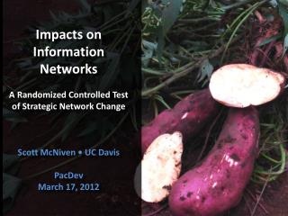 Impacts on Information Networks A Randomized Controlled Test of Strategic Network Change