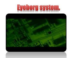 Eyeborg system.