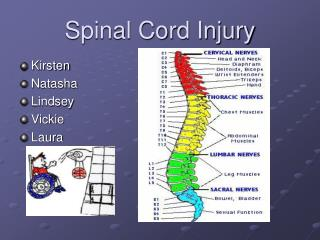Spinal Cord Injury