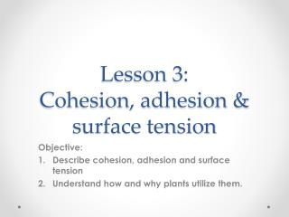 Lesson 3:   Cohesion, adhesion & surface tension